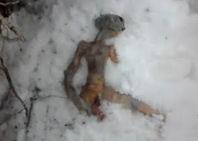 La verdadera historia del Extraterrestre encontrado muerto en Rusia