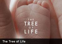 """Polémica y expectativas ante """"El árbol de la vida"""" en Cannes"""