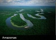 Brasil utilizará al ejército para defender el Amazonas