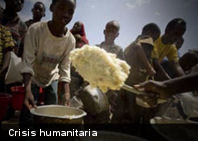 FAO pide con urgencia acelerar ayuda humanitaria para comunidades en el Cuerno de África