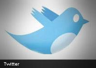Se acabó el misterio: el nombre del famoso pájaro azul de Twitter es...