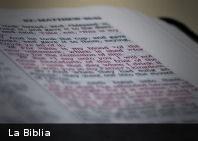 Primera Biblia ecológica en español busca crear conciencia ambiental