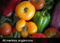 Pesticidas podrían ser la causa de alergias a algunos alimentos