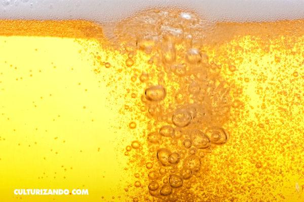 ¿Una fuente de cerveza? En Eslovenia habrá una