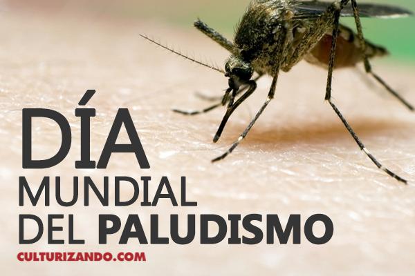 A propósito del Día Mundial del Paludismo o Malaria