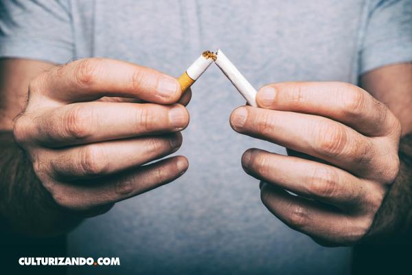 La lucha anti tabaco ha evitado 8 millones de muertes