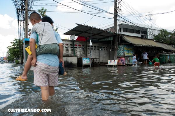 A propósito del Día Internacional para la Reducción de los Desastres Naturales