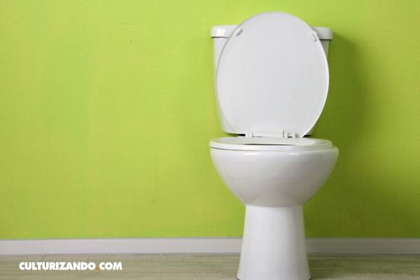 ¿Sabías que fue la ONU quien decretó el Día Mundial del Inodoro?