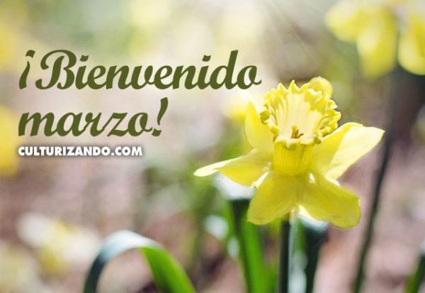 ¡Bienvenido marzo!
