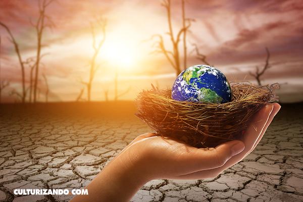 A propósito del Día Mundial del Clima: Simples consejos para ayudar al Planeta