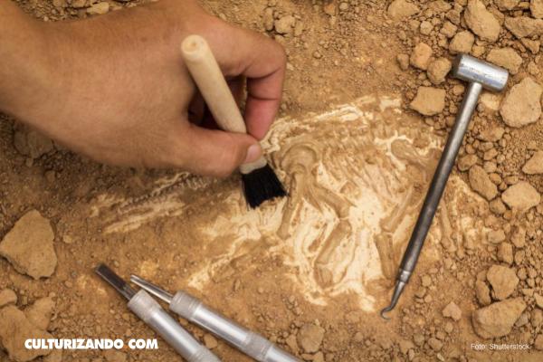 Descubren restos humanos de 300 mil años atrás en Marruecos