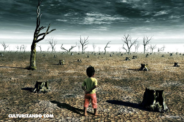 ¿De qué trata el Acuerdo de París sobre el cambio climático?