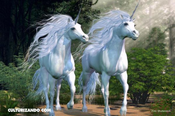 Leer para creer: Corea del Norte ha 'descubierto' la existencia de un unicornio
