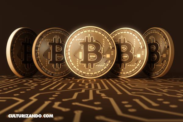 Los 5 propietarios de bitcoins más ricos del mundo