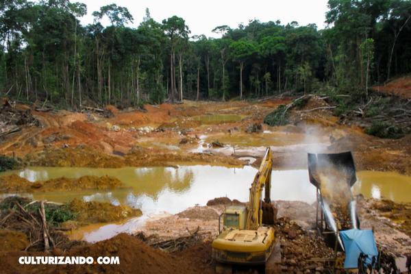 Los humanos ponen en peligro un tercio de las reservas naturales de la Tierra