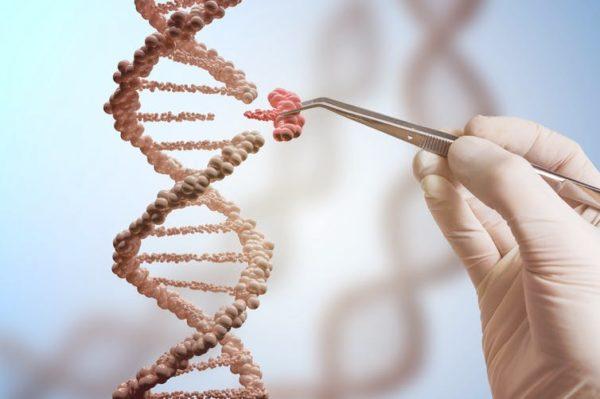 CRISPR: la edición genética aún no está preparada para tratar a pacientes