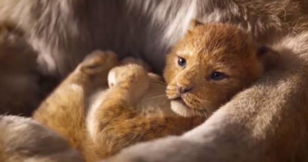 El remake de 'The Lion King' ya tiene su primer teaser