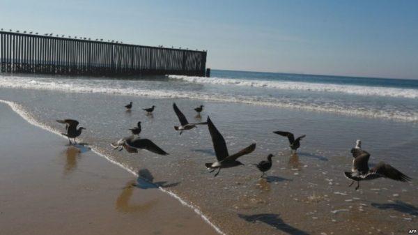 EE.UU.: Corte Suprema rechaza apelación de ambientalistas contra muro fronterizo