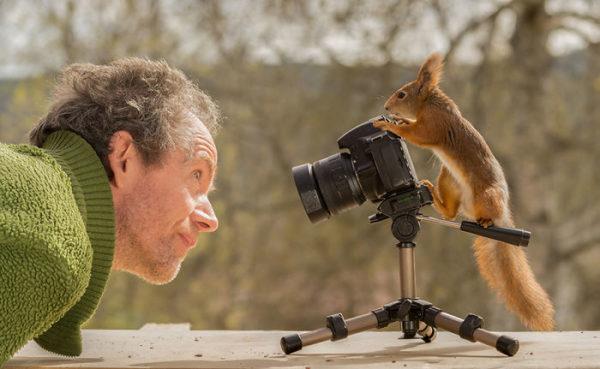EN FOTOS: Un hombre lleva 6 años fotografiando ardillas todos los días y los resultados son ADORABLES