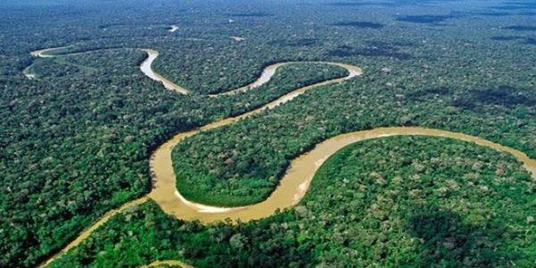 La protección estricta del Amazonas fomenta la productividad agrícola en Brasil