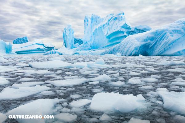 ¡Alerta roja! La Antártida podría perder pronto un trozo de su superficie