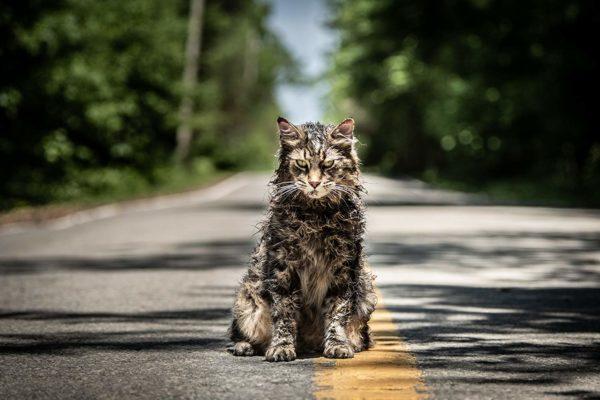 'Pet Sematary' la nueva aterradora adaptación de la historia de Stephen King