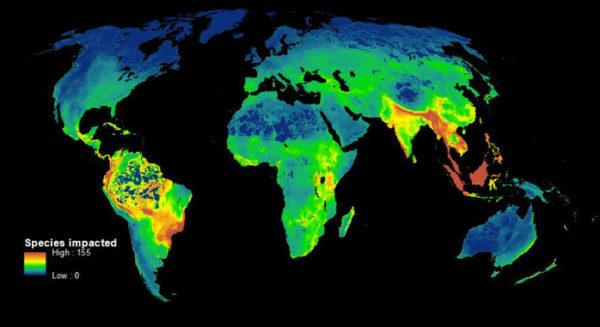 El primer mapa que muestra cómo los humanos destruyen la biodiversidad