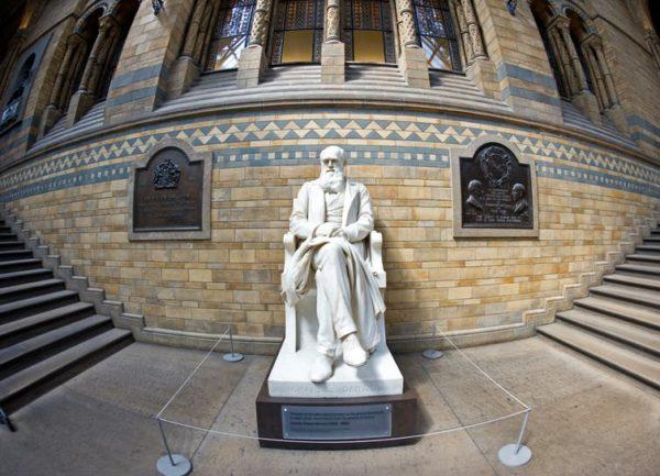 Darwin, el científico que nos bajó del pedestal