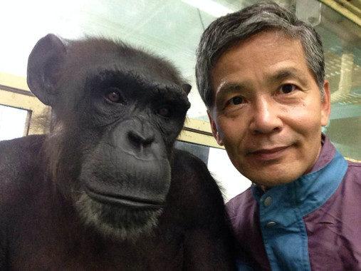 """""""Humanos y chimpancés somos casi la misma criatura"""""""