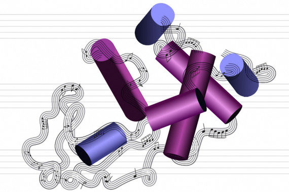 Logran convertir proteínas en música y viceversa