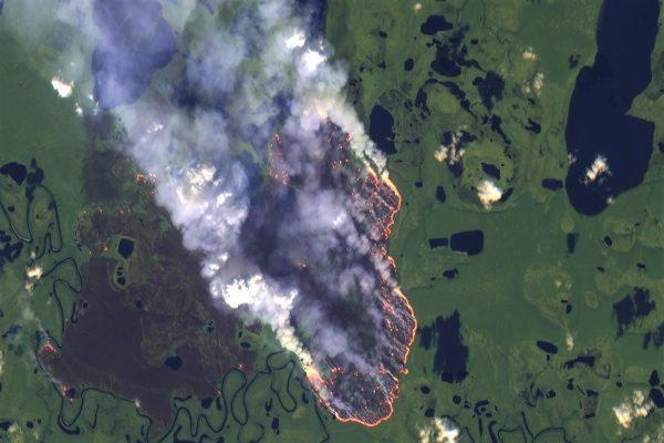 Incendios en el Amazonas: Todo lo que debes saber sobre los 16 días de la tragedia en Sudamérica