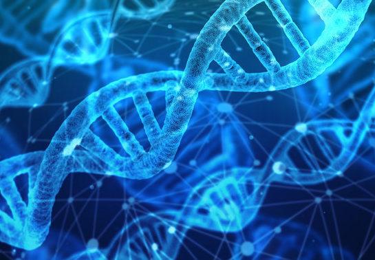 Hallada una molécula culpable de expandir las células tumorales