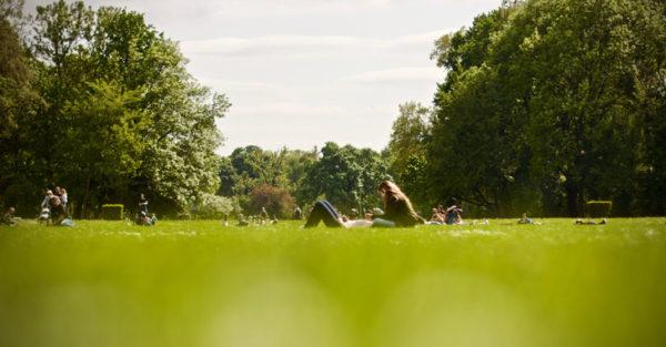 Vivir cerca de espacios verdes se asocia con menor riesgo de síndrome metabólico