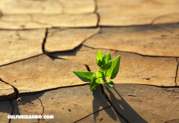 Si el calentamiento global es imparable, ¿por qué esforzarnos en reducir emisiones?