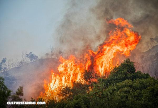 Australia tiene cada vez más días propicios para incendios