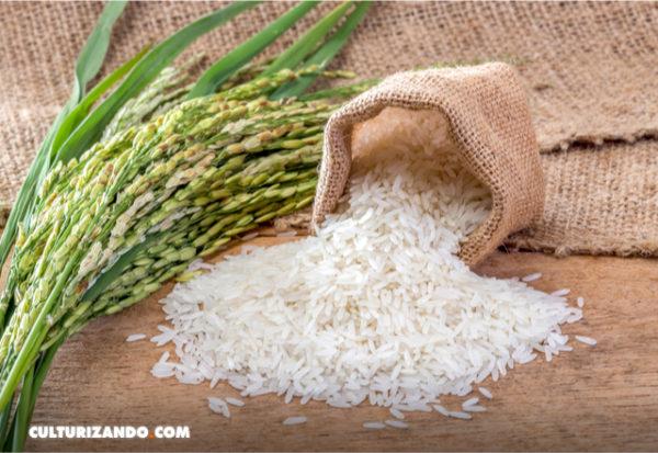 Una fotografía con el móvil detecta fraudes en el etiquetado de arroz