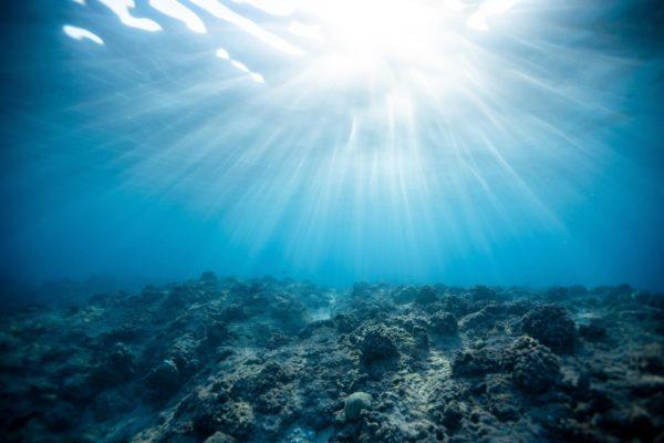 Arrecifes artificiales: ¿Cómo mejoran la ecología marina?