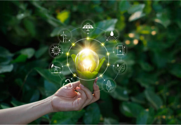 Conoce las tendencias ecológicas que marcarán el futuro